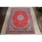 Minnich Soft Plush Floral Kashan Persian Red/Blue Area Rug