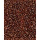 Tyronn Red Area Rug Rug Size: Rectangle 7'9