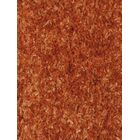 Astor Orange Area Rug Rug Size: 7'9