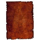 Jalwa Hand-Tufted Wool Rust Area Rug Rug Size: 5'2
