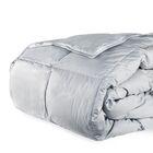 Cloud Heavyweight Down Alternative Comforter Size: Full / Queen, Color: Cloud Gray