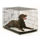 Plush Washable Crate and Kennel Mat Size: 28