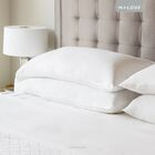 Parma French Linen Sheet Set Size: King, Color: White