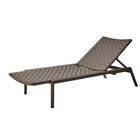 Ridgedale Adjustable Chaise Lounge Finish: Taupe