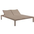 Renae Double Chaise Lounge Frame Color: Silver Gray, Cushion Color: Taupe
