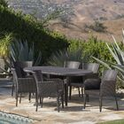 Molter Outdoor 7 Piece Dining Set