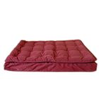 Luxury Pillow Top Mattress Pet Bed in Earth Red Size: Medium