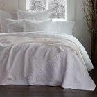 Twilight Cotton Blend Sham Color: Pale Gray