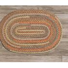 Print Party Ovals Brown Area Rug Rug Size: Oval Runner 2' x 10'