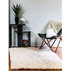 Luxury Shag Ivory Area Rug Rug Size: Rectangle 5' x 8'
