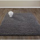 Bostrom Charcoal Area Rug Rug Size: Rectangle 5' x 7'