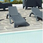 Kassiopeia Chaise Lounge (Set of 2) Color: Dark Gray