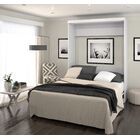 Jordan Queen Murphy Bed Color: White