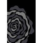 Gray Area Rug Rug Size: Rectangle 7'10
