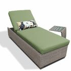 2 Piece Chaise Lounge Set with Cushion Fabric: Cilantro