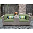 Florence 3 Piece Conversation Set with Cushions Color: Cilantro