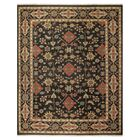 Carrickfergus Knotted Wool Black/Brown Floral Area Rug Rug Size: Rectangle 2' x 3'