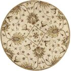 Blarwood Champagne Rug Rug Size: Rectangle 3'3