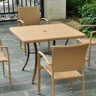 Katzer Patio Dining Table Finish: Honey