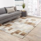 Ballylinney Gray/Brown Area Rug Rug Size: Rectangle 2' x 3'