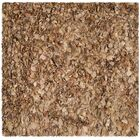 Carrol Hand-Tufted Brown Area Rug Rug Size: Square 6'