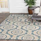Mira Blue Outdoor Area Rug Rug Size: Rectangle 5'3