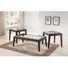 Greear 2 Piece Coffee Table Set