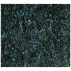 Messiah Green Shag Area Rug Rug Size: Square 8'