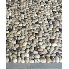 Pebbles Beige Area Rug Rug Size: Rectangle 5' x 8'