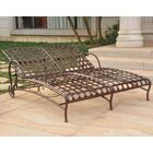 Greaves Double Chaise Lounger Color: Hammered Bronze