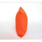 D�cor Alyssa Luvs Indoor/Outdoor Throw Pillow Size: 12