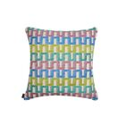 Elite Color Path Indoor/Outdoor Sunbrella Throw Pillow Size: 24
