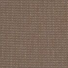 Dune Area Rug Rug Size: Rectangle 6' x 9'