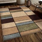 Andre Shag Area Rug Rug Size: 5'3
