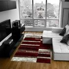 Red Area Rug Rug Size: 5' x 6'11