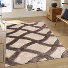 Hand-Tufted Ivory/Brown Area Rug Rug Size: 4'11