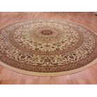 Brrown/Beige Area Rug Rug Size: Rectangle 10' x 13'
