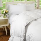 Heavywight Down Comforter Size: King