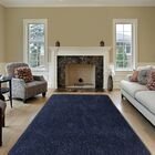 Colorville Navy Area Rug Rug Size: 7'10