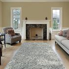 Colorville Silver Area Rug Rug Size: 6'7