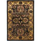 Golden Jaipur Antiquity Black/Gold Area Rug Rug Size: Rectangle 9'6