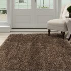 Shag Hand-Woven Brown Area Rug Rug Size: Rectangle 5'3