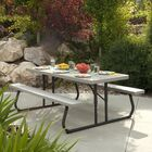 Folding Plastic Picnic Table Color: Putty