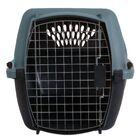 Metallic Fashion Pet Carrier Size: Medium (14.5