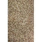 Ilfracombe Brown Solid Area Rug Rug Size: 8' x 11'