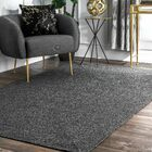 Alvarez Hand-Braided Charcoal Indoor/Outdoor Area Rug Rug Size: Rectangle 5' x 8'