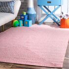 Ambrose Hand-Braided Pink Indoor/Outdoor Area Rug Rug Size: Rectangle 4' x 6'
