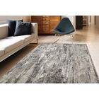 Cadence Transitional Gray Area Rug Rug Size: Rectangle 7'10