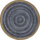 Edwyn Slate Area Rug Rug Size: Round 7'7