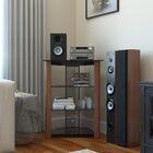 Multi-Level Audio Rack Color: Wood Cherry